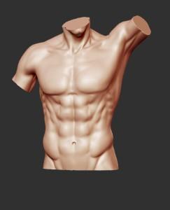 male torso front
