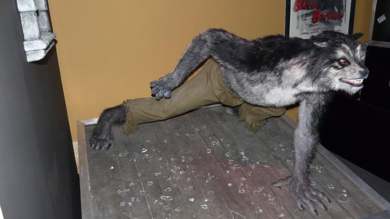 Werewolf at Muzeo